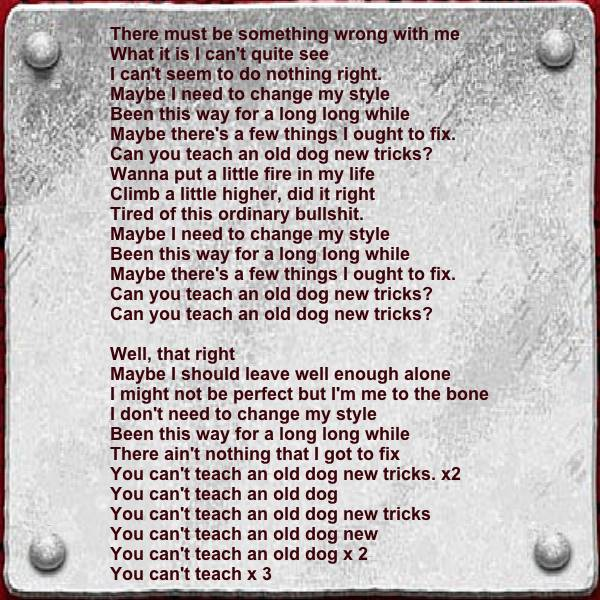 Can T Teach An Old Dog New Tricks Song