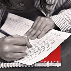 Chinese writing skills